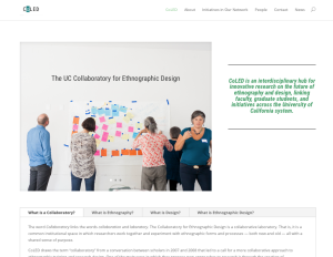 Shows a screen shot of the home page for CoLED, including an about phrase in green text, a navigation menu, and a photo showing a group of people looking at a series of sticky notes arranged on a wall, and a tabbed-navigation bar with several questions and answers.