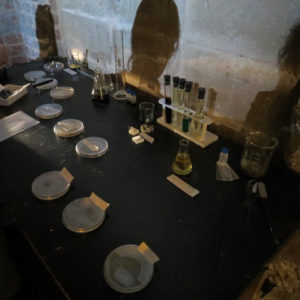 A series of petri dishes and testubes arranged ona. table covered with a black table cloth